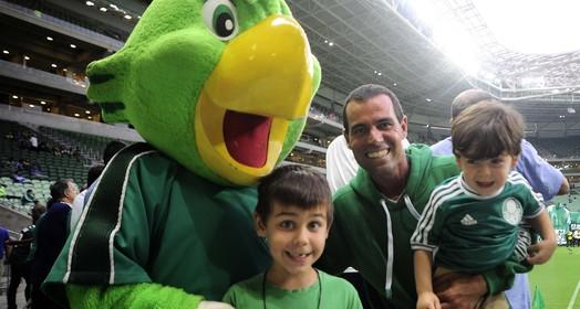 no verde (Marcos Ribolli)