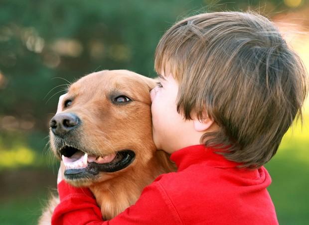 Animais de estimação (Foto: Thinkstock)