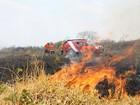 Incêndios florestais no DF destroem área de 12,3 mil hectares até agosto