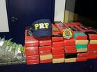 PRF apreende 54kg de droga em carro envolvido em acidente na BR-101