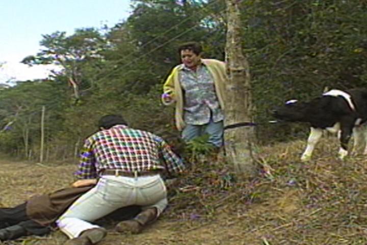 Celina e Alaor encontram Malu cada no cho, ao lado de uma cobra morta (Foto: reproduo/viva)
