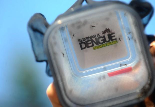Dengue avança em todas as regiões do país e chega a 200 registros por hora