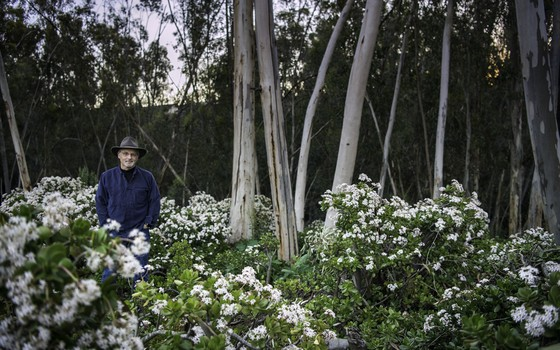 Richard Luov em um jardim. Ele defende que o contato com a natureza é essencial para a saúde (Foto: Divulgação/Josh Endres-Garden)