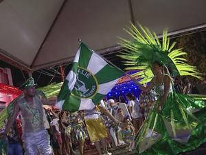 Pereiras recebeu 20 mil visitantes, estimam organizadores do carnaval (Foto: Reprodução/TV TEM)