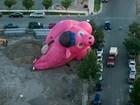 Balão de ar no formato de porco bate em árvore em festival nos EUA