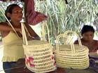 No Pará, famílias recebem benefício por preservar a natureza
