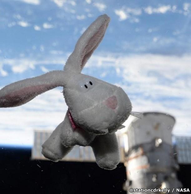 A estrela de um dos primeiros posts de Scott foi o coelhinho da Páscoa. 'O coelhinho veio visitar. #FelizPascoa da EEI' (Foto: Scott Kelly/Nasa)