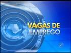PATs disponibilizam 332 vagas de emprego na região de Itapetininga