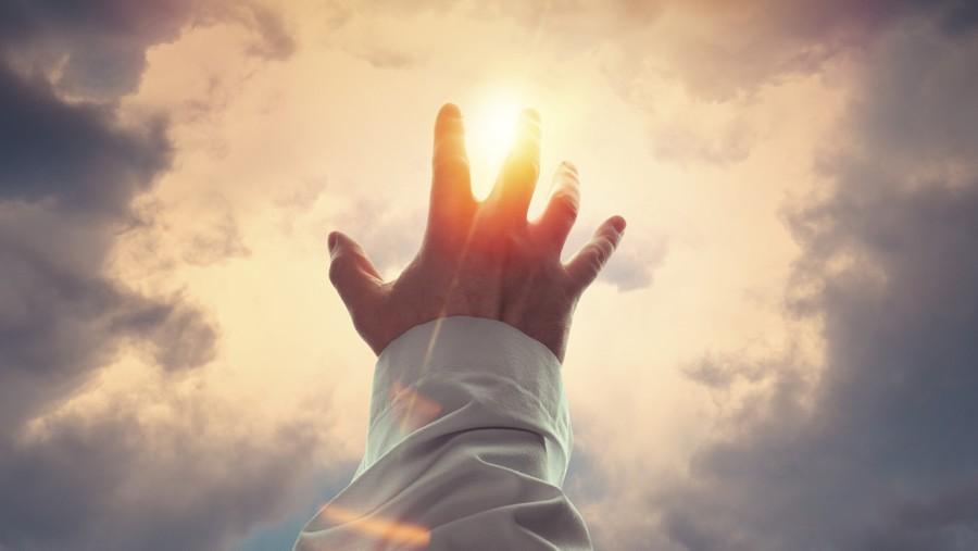 Ressurreição ainda é inédita para a ciência (Foto: Reprodução)