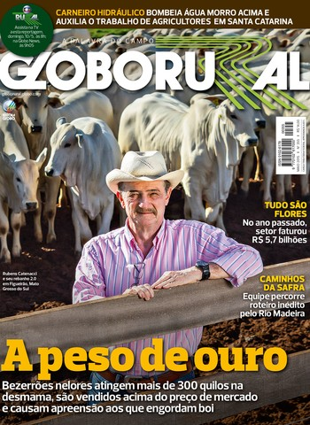 Ler revista globo rural online dating