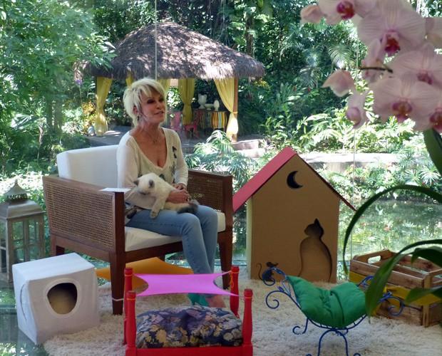 Ana Maria dá truques para acomodar seus gatos em casa (Foto: Mais Você/TV Globo)