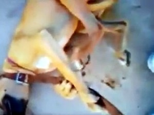Amarrada com cinta, cadela foi agredida com chutes (Foto: Reprodução/Facebook)