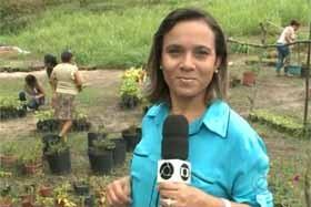 Silvia Torres (Foto: Divulgação)