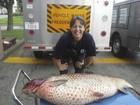 Carpa de 27 quilos é encontrada em pequena vala em cidade americana