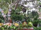Paraíba investe na Economia Criativa para alavancar o turismo