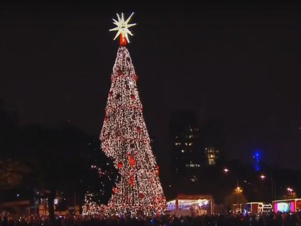 Árvore de Natal do Ibirapuera é inaugurada (Foto: Reprodução/ TV Globo)