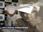 Polícia Civil apreende cerca de 20 kg de maconha em Aparecida de Goiânia