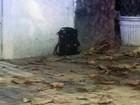Esquadrão Antibomba fecha via de Botafogo e analisa bolsa abandonada