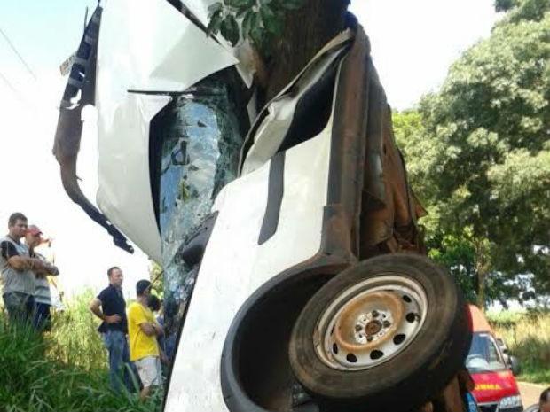 Veículo ficou preso na árvore, depois do acidente. (Foto: Divulgação)