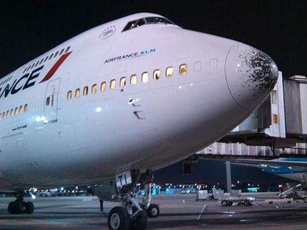 Voo da Air France retornou ao Rio na noite de terça-feira (Foto: Alessandro Santos/Arquivo Pessoal)
