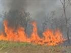 Governo investirá R$ 1,7 milhão para o combate a queimadas em MT