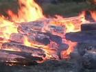 PF investiga incêndio em depósito com madeira do Ibama no Pará