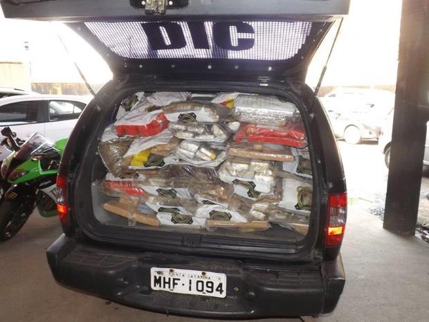 Drogas foram preendidas desde 2013 em 566 procedimentos policiais (Foto: Polícia Civil/Divulgação)