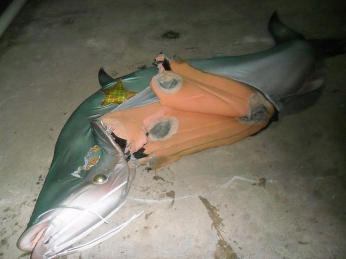 Fantasia do mascote do Cametá, o peixe Mapará, danificada por funcionários do clube (Foto: Celso Rodrigues/Arquivo pessoal)