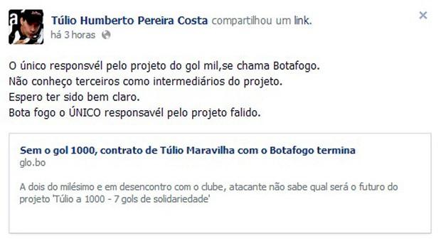 Reprodução facebook tulio maravilha botafogo (Foto: Reprodução / Facebook)