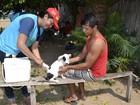 Meta é vacinar 12 mil cães e gatos até dezembro em Óbidos, PA