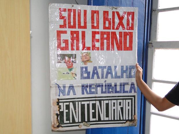Bixos eram obrigados a andar com placas em Ouro Preto; prática foi proibida pelo MPF (Foto: Thais Pimentel/G1)