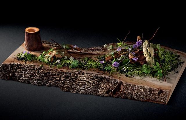 Da floresta ao prato (Foto: Sergio Coimbra)