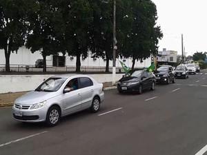 Aproximadamente 60 pessoas fizeram uma carreata pela área central de Lins (Foto: Divulgação/Matheus Pavezzi)