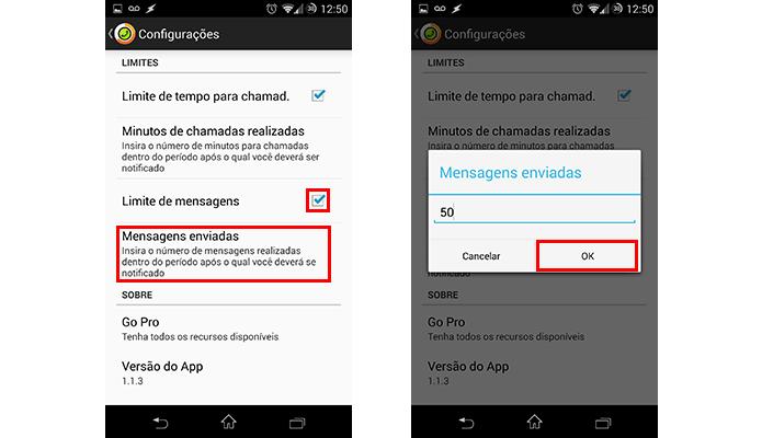 Insira o limite de SMS previstos no plano (Foto: Reprodução/Paulo Alves)