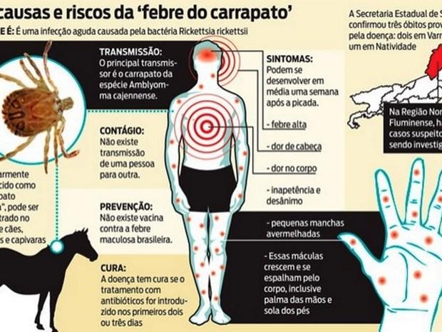 Febre maculosa (Foto: Ministério da Saúde/Divulgação)