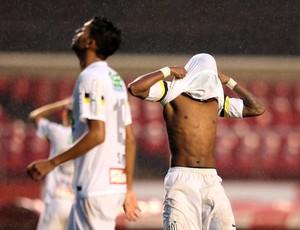 Santos x Flamengo (Foto: Marcos Ribolli)