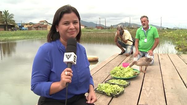 Dione Aguiar ao lado de Vitória e o técnico ambiental Cristian  (Foto: Reprodução/TV Tribuna)
