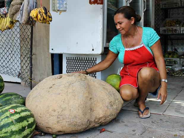 Dona Rosa exibe orgulhosa a batata 'gigante' colhida em seu sítio no Amazonas (Foto: Leandro Tapajós/G1 AM)