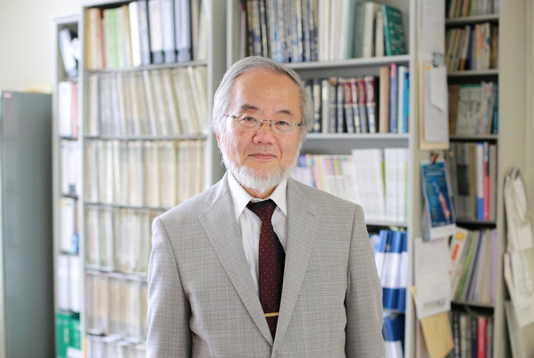 Japonês leva Nobel de Medicina por pesquisa sobre reciclagem da célula (Foto: )