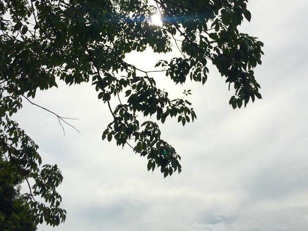 Previsão é de chuvas isoladas em alguns pontos de MS (Foto: Isabela Cavalcante / G1 MS)