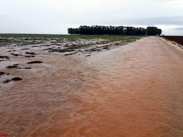 Chuva forte alagou plantações em Campo Novo do Parecis (MT) (Foto: Giovana Velke/Sindicato Rural de Campo Novo do Parecis)