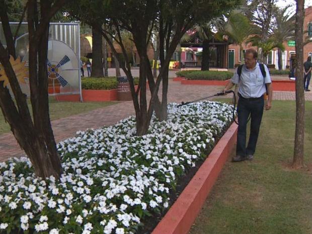 Agronegócio gera 82,4% das vagas na região de Campinas, diz Caged (Foto: Reprodução EPTV)