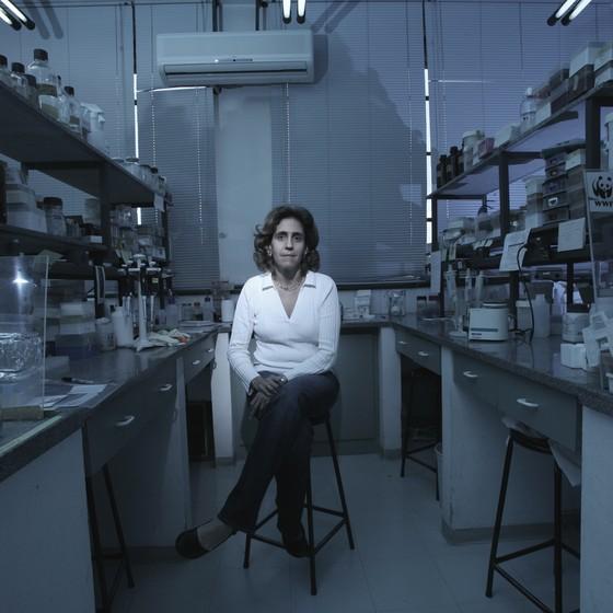Lygia da Veiga Pereira: a ciência não vai dizer o que fazer com o conhecimento científico (Foto: Frederic Jean/ Editora Globo)