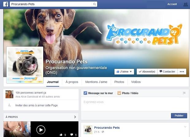 Página Procurando pets, que funciona em rede social e ajuda donos a encontrar animais domésticos perdidos (Foto: Facebook/Divulgação)