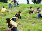 Voluntários plantam 10 mil mudas de árvores na Cidade da Criança