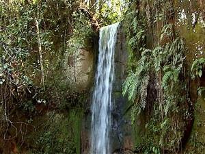 Não perca uma aventura no meio da mata e pela água, com direito a cachoeira de água quente (Foto: Reprodução EPTV)