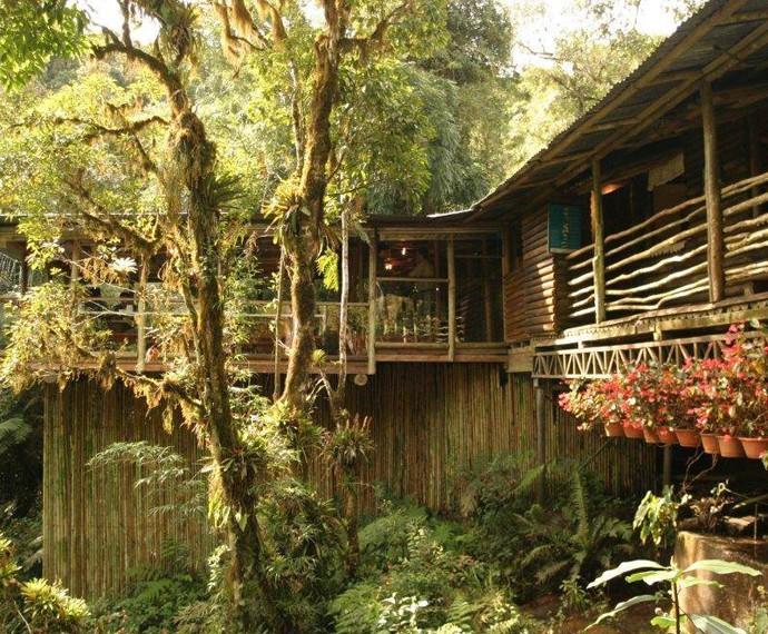 Paraíso das Trutas é um lugar cercado por uma natureza que continua praticamente 100% intacta (Foto: Reprodução/Redes Sociais)