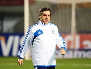 Gilson Kleina Palmeiras  (Foto: Marcos Ribolli)