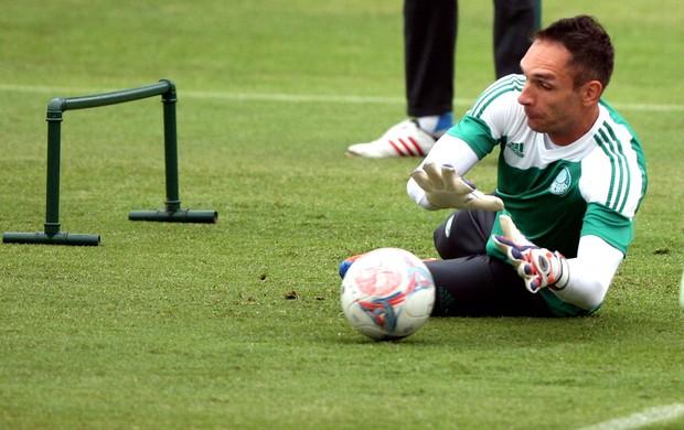 Fernando Prass Treino Palmeiras (Foto: Marcos Ribolli)