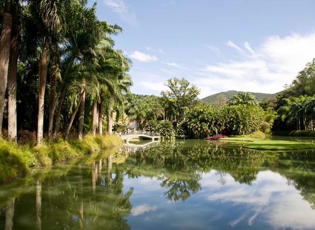 O jardim de Inhotim tem a maior coleção em número de espécies de plantas vivas entre os jardins botânicos brasileiros (Foto: Ricardo Mallaco)